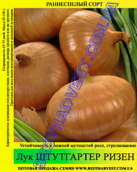 Семена лука «Штутгартер Ризен» 10 кг (мешок)