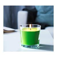 Ароматическая свеча в стакане IKEA SINNLIG 9 см зеленое яблоко зеленый 702.510.85
