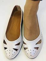 Стильные! Женские туфли -балетки из натуральной кожи 36.37.38.39.Mario Muzi Супер комфорт.Vellena, фото 6