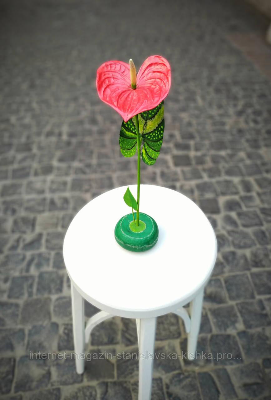 Квітка-фламінго  ANTHURIUM