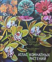 Атлас комнатных растений. Гапон В.