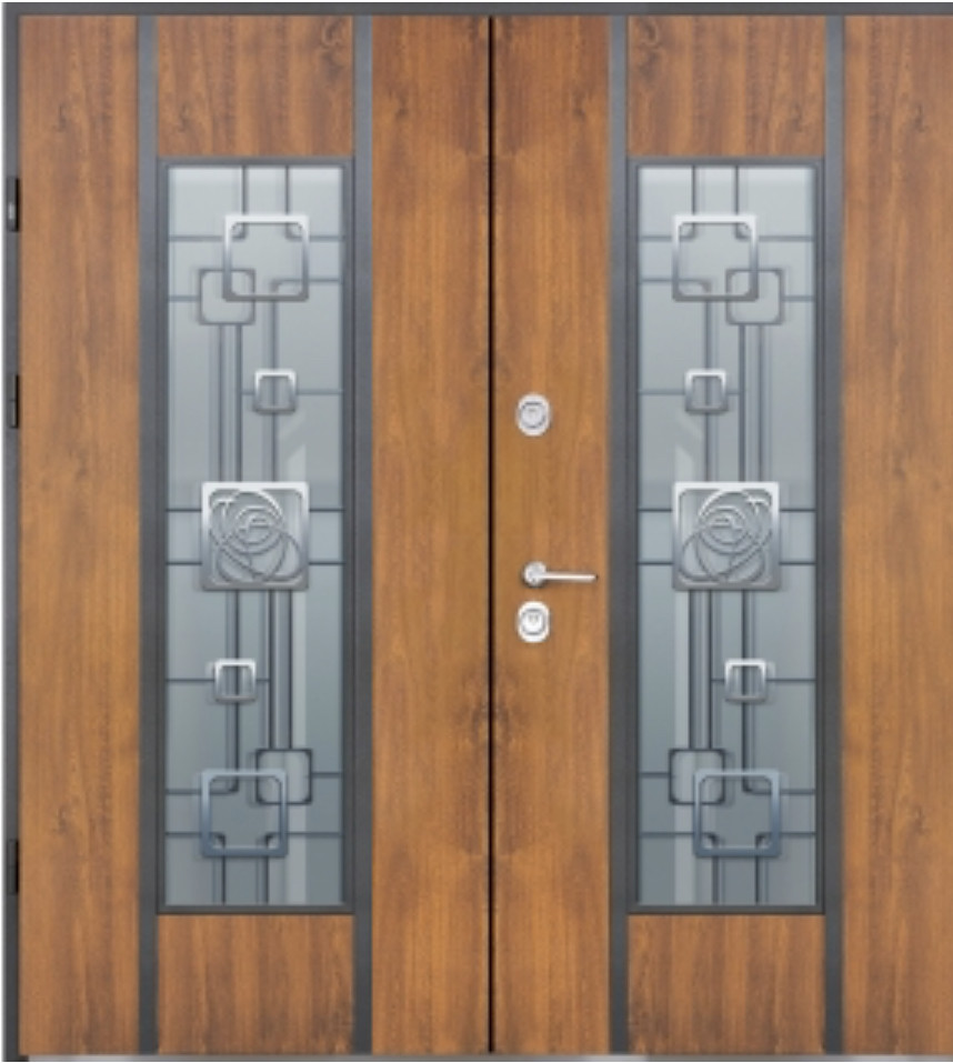 Двері вхідні вуличні STRAJ (Страж) Alfa Double
