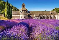 Пазл лавандовое поле Прованс, Франция, 1000 элементов Castorland С-104284