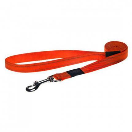 Поводок для собак Utility M, 1,4 оранжевый, фото 2