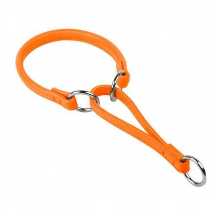 Нашийник-зашморг Glamour для собак 13 мм, 65 см, оранжевий, фото 2