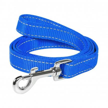Нейлоновий ремінець Dog Extreme подвійний для собак 20 мм, 122 см, блакитний, фото 2