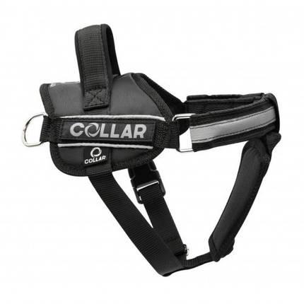 Шлея Dog Extreme Police №4 з ліхтариком для собак 70-100 см, чорний, фото 2