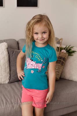 """Комплект для девочки с шортами котик в цветах """"Базилио"""""""