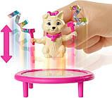 Barbie Барби Тереза гимнастка серии You can be GHK24 Dreamhouse Adventures Teresa Spin 'n Twirl Gymnast Doll, фото 2