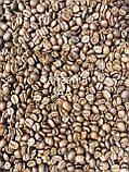 Кофе в зернах Танзанія АВ Арабіка 100%, фото 2