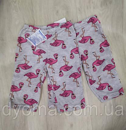 """Детские капри  """"Фламинго"""" для девочек, фото 2"""