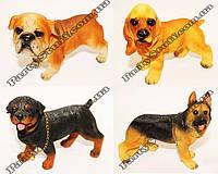 Статуэтки Собаки средние в ассортименте, фото 1