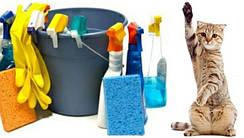 Гігієна будинку (Засоби для прибирання за котом)