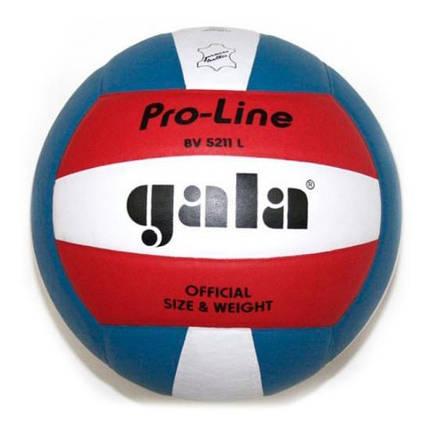 Мяч волейбольный Gala Pro-Line BV5011SAE, фото 2