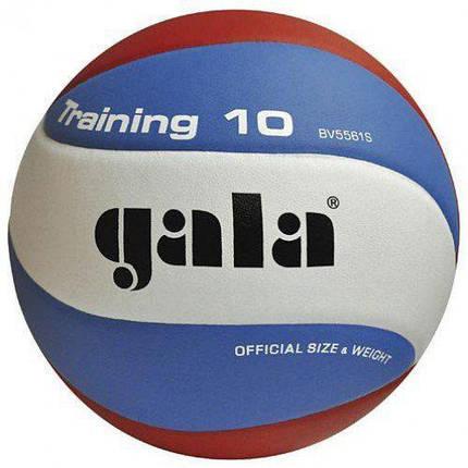 Мяч волейбольный Gala Training BV5561SB, фото 2
