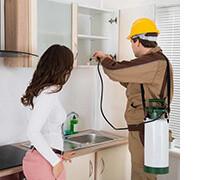 средства защиты от насекомых в квартире, фото