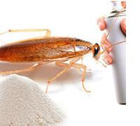 дихлофос от насекомых, фото