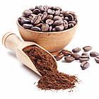 Кофемолка DSP KA-3002, 200 Вт. Объем 50г., фото 7
