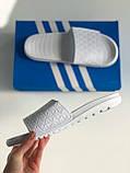 Шльопанці Adidas White, фото 4