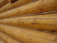 Конопатка срубов натуральными материалами