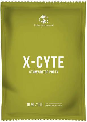 Икс-сайт/ X-Cyte стимулятор цветения,10 мл — регулятор роста на основе цитокинина, фото 2