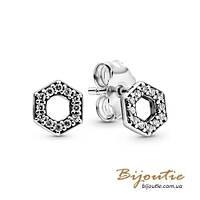 Срібні Сережки-гвоздики Пандора СЯЮЧІ МЕДОВІ СТІЛЬНИКИ #298800C01