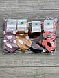 Женские носки короткие хлопок Montebello цветные в горох горошек 35-40 12 шт в уп микс 6 цветов, фото 3