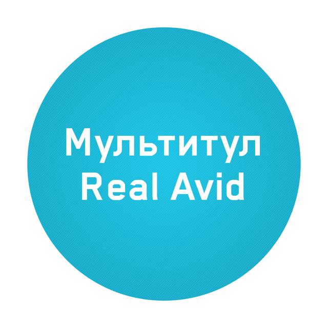 Мультитул Real Avid