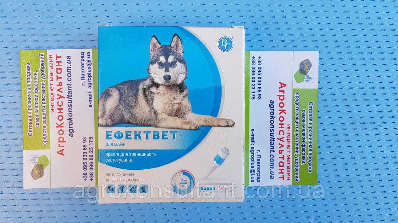 Капли Эффектвет 1,0 мл для собак от блох, клещей, вшей, власоедов. поштучно