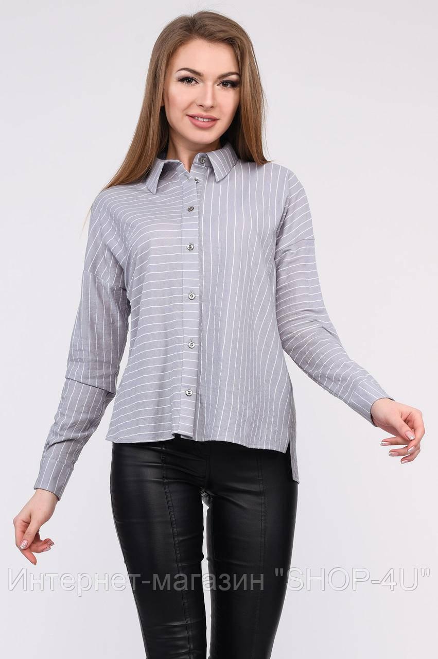 Carica Рубашка Carica BK-7688-4