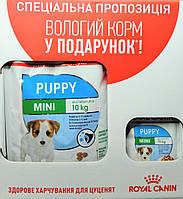 Термін до 08.2021р. Акція +3 пауча! Корм для щенков Royal Canin Mini Puppy (Роял Канин Мини Паппи ) 2 кг