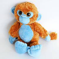 Синяя обезьянка