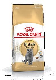 Royal Canin British Shorthair Adult 2кг - корм для кішок породи британська короткошерста