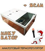 Ясли (брудер) + инкубатор Курочка Ряба ИБ-130 2в1 + овоскоп в подарок, фото 1