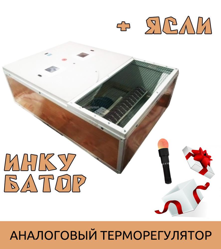 Ясли (брудер) + инкубатор Курочка Ряба ИБ-130 2в1 + овоскоп в подарок