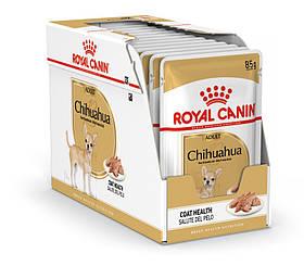 Royal Canin CHIHUAHUA ADULT 0,085 кг