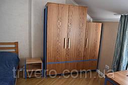 Шкаф для одежды стиль лофт из ясеня