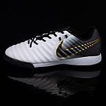 Сороконіжки Nike Tiempo X Legend VII Pro TF (39-45), фото 4