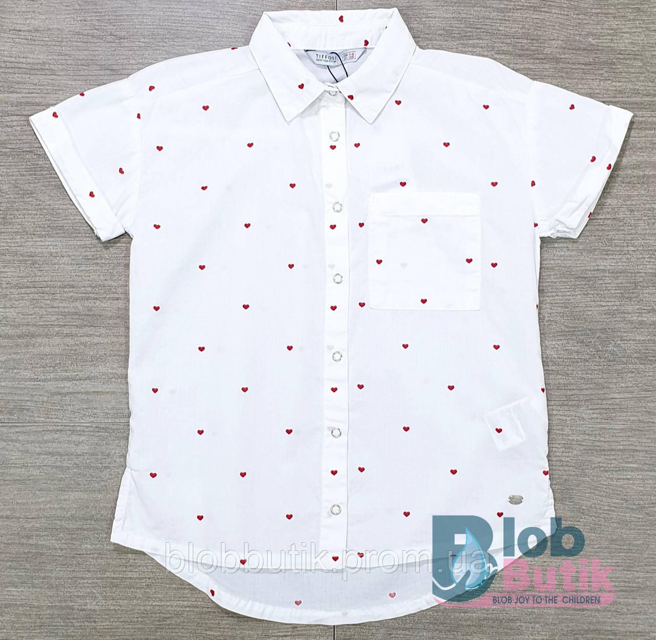 Сорочка шкільна біла для дівчинки.