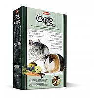Padovan Grandmix CAVIE & CINCILLA  для шиншилл, морских свинок и дегу 850 гр.