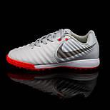 Сороконіжки Nike Tiempo X Legend VII Pro TF (39-45), фото 3