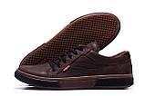 Мужские кожаные кеды Levis Chocolate Classic  (реплика), фото 5