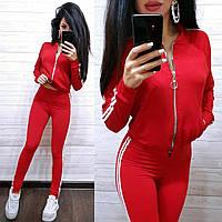 Красный спортивный костюм на молнии