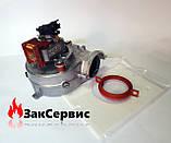 Вентилятор на газовый котел Ariston GENUS (EVO) 24 FF 65104255, фото 3
