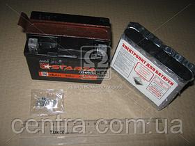 Аккумулятор 4Ah-12v STARTA AGM (YTX4L-BS) (113х70х86), EN45 5237994778