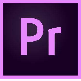 Adobe Premiere Pro CC for teams Для государственных учреждений (65297627BC01A12)