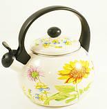 Чайник газовый Rossner Austria TW 4310 2,2 литра, фото 2