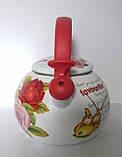 Чайник газовый Ronner Austria B1193 2.2 литра, фото 3