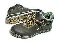 Мужские  зимние кожаные ботинки Ecco Biom brown, фото 1