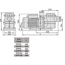 Насос AquaViva LX STP100M (220В, 10 м3/ч, 1HP), фото 2